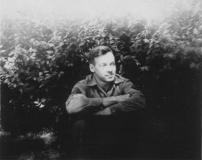 Donald L. Franson - U.S. Army, Wiesbaden-Biebrich, Germany 1945