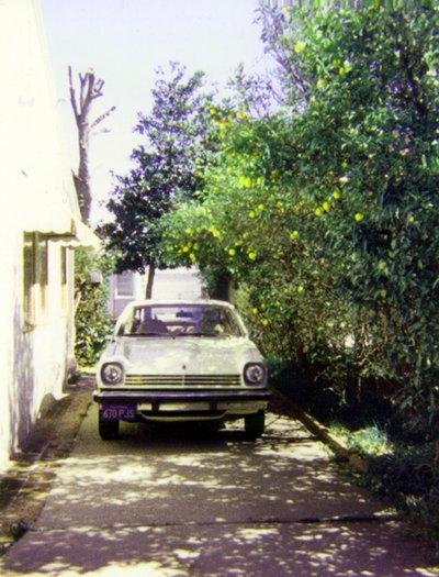 DLFs 1976 Chevrolet Vega, lemon trees