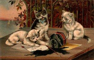 Kittens spill inkwell
